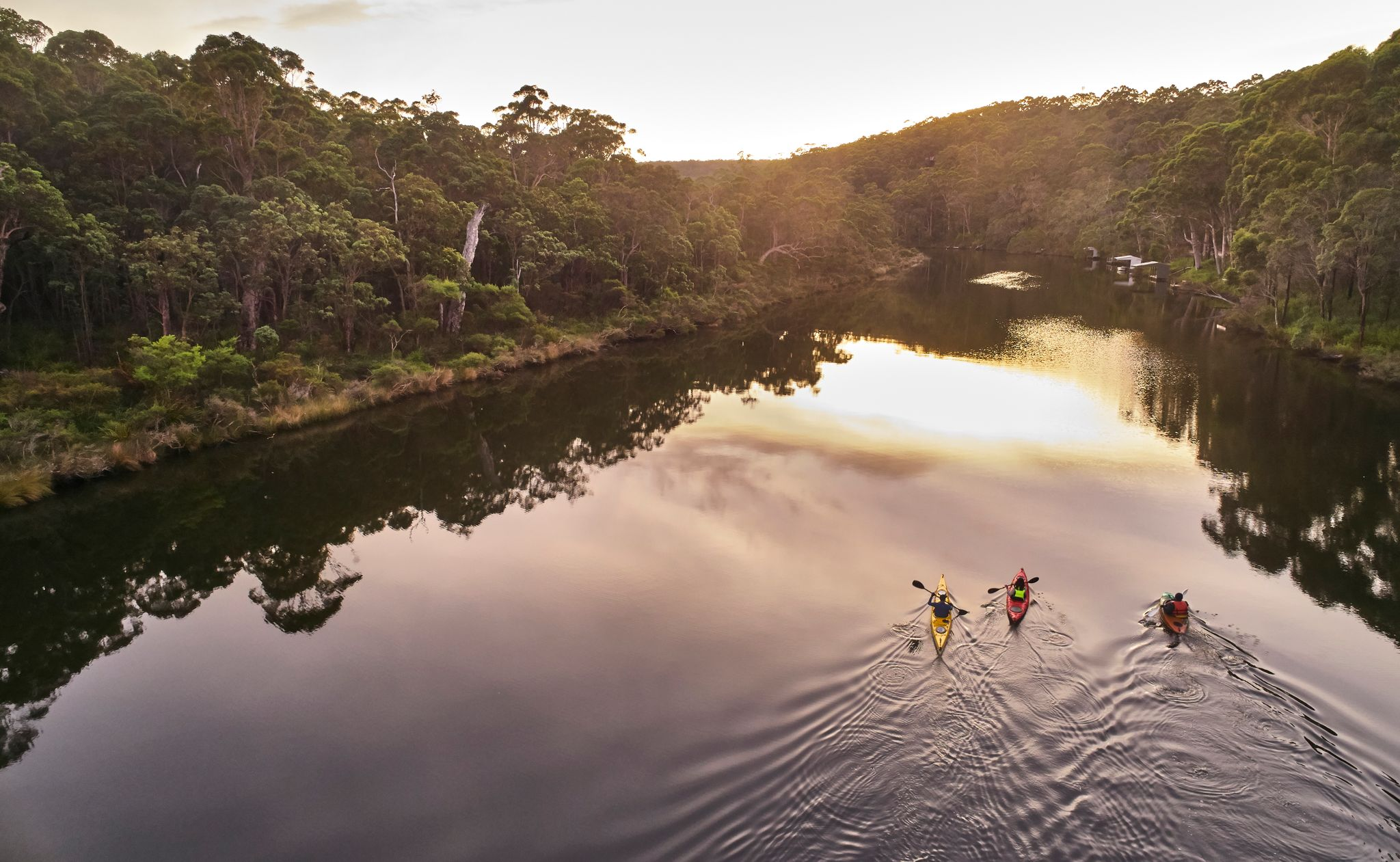 Southern Forests Valleys Nornalup Kayaking at sunrise Credit Francis Andrijich web