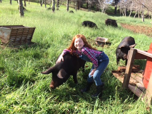 stella and our pigs IMG 1235